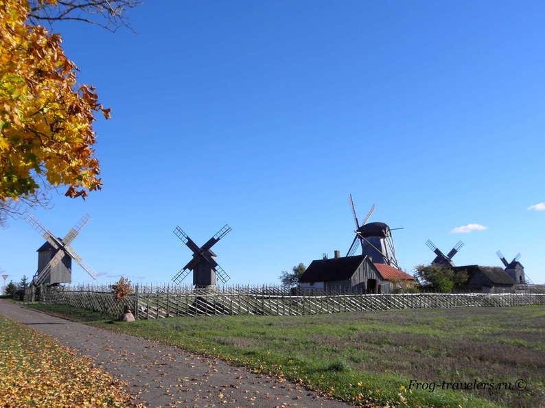 Мельницы в Эстонии. Мельницы острова Сааремаа. Мельницы Англа