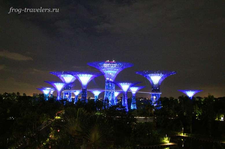 Сады у залива ночью