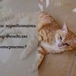 Как коту быстро заработать в интернете?