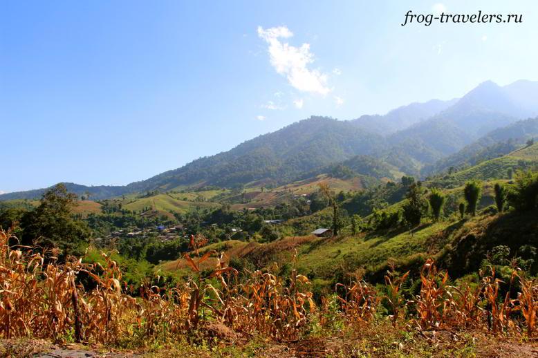 Провинция Чианг Май Тайланд
