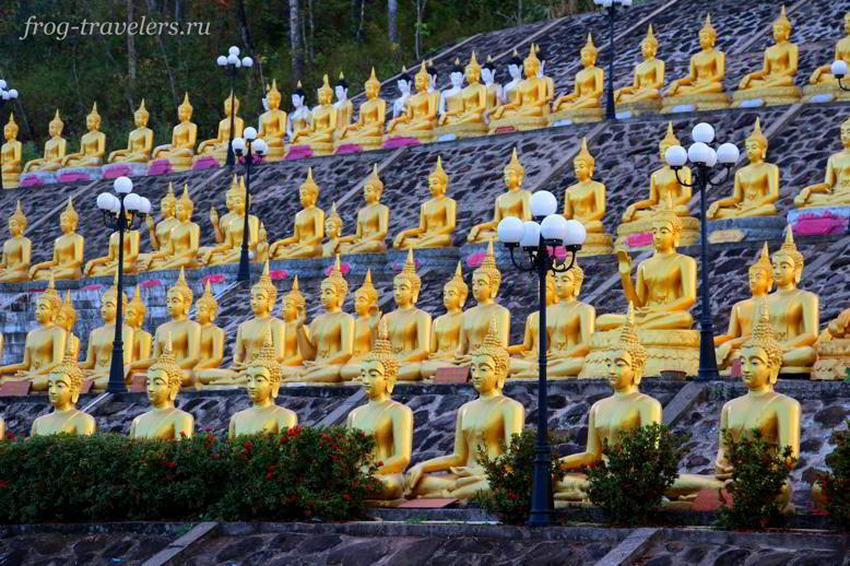 Золотые Будды