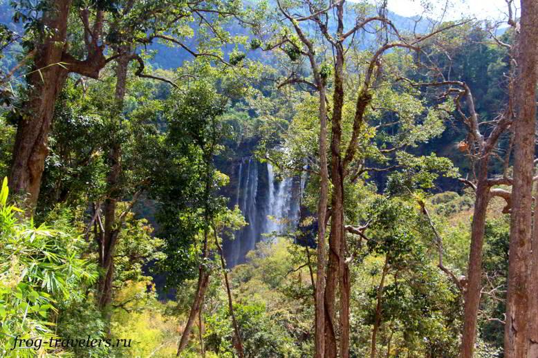 Джунгли Лаоса
