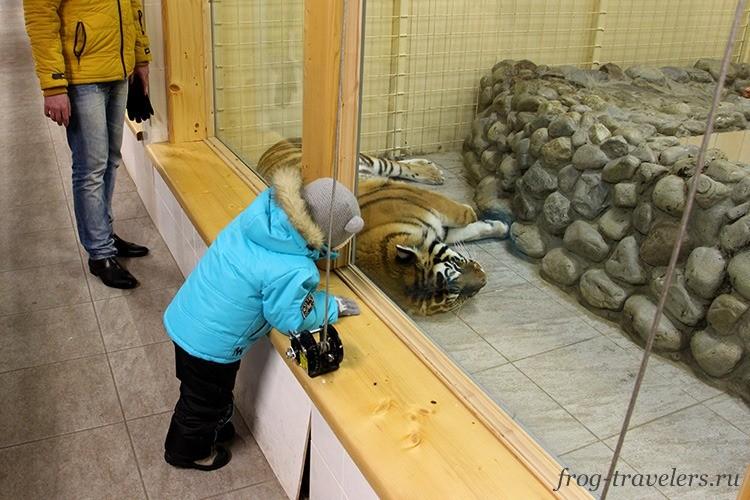 Зоопарк в Карелии отзывы