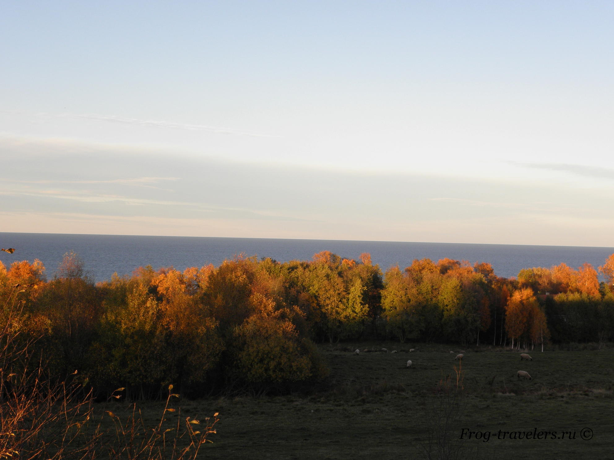 Осенний вечерний вид на Балтийское море и барашки :):