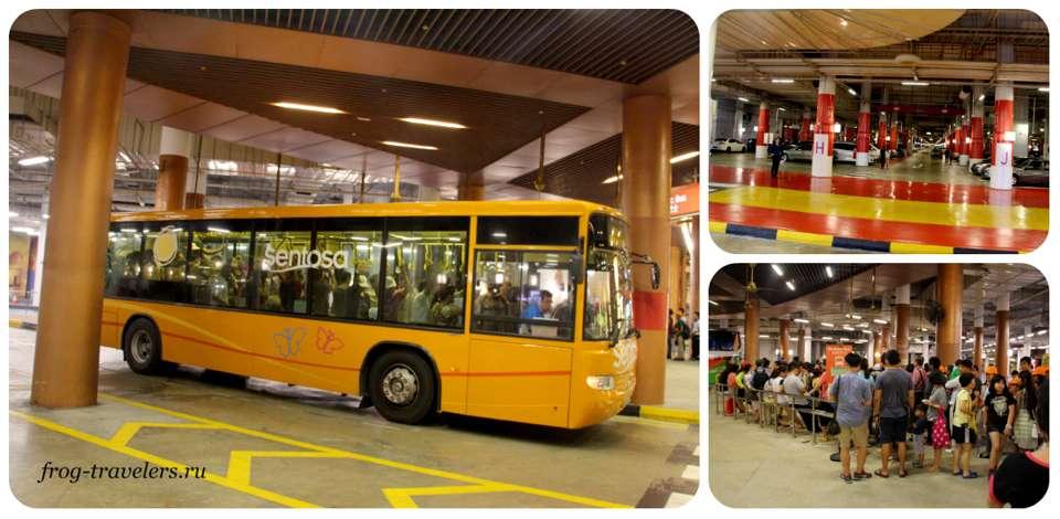 Бесплатные автобусы