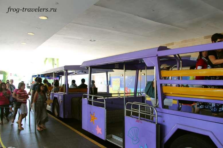 Пляжный трамвай