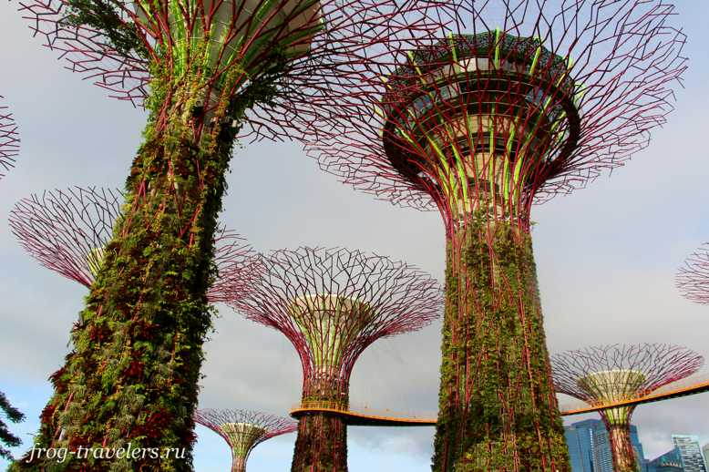 Сады Сингапура днем