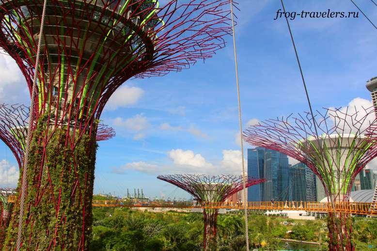 Мост в Садах у залива в Сингапуре
