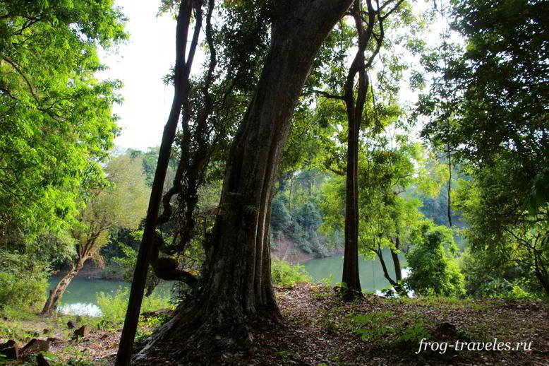 Река Houay Tomo Лаос