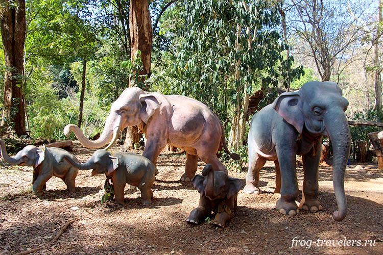 Слоны в Лаосе