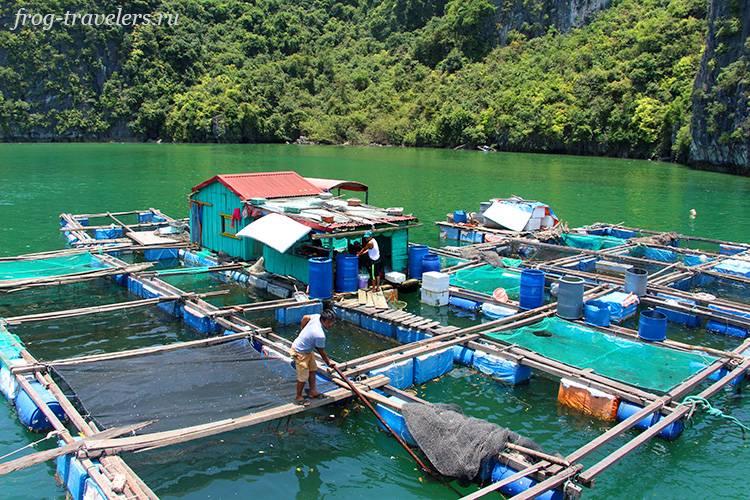 Как живут рыбаки в Азии